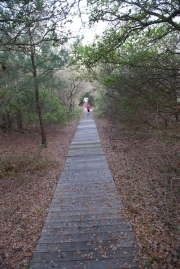 OBX_Camping-0005